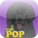 Ask POP:  Full Version